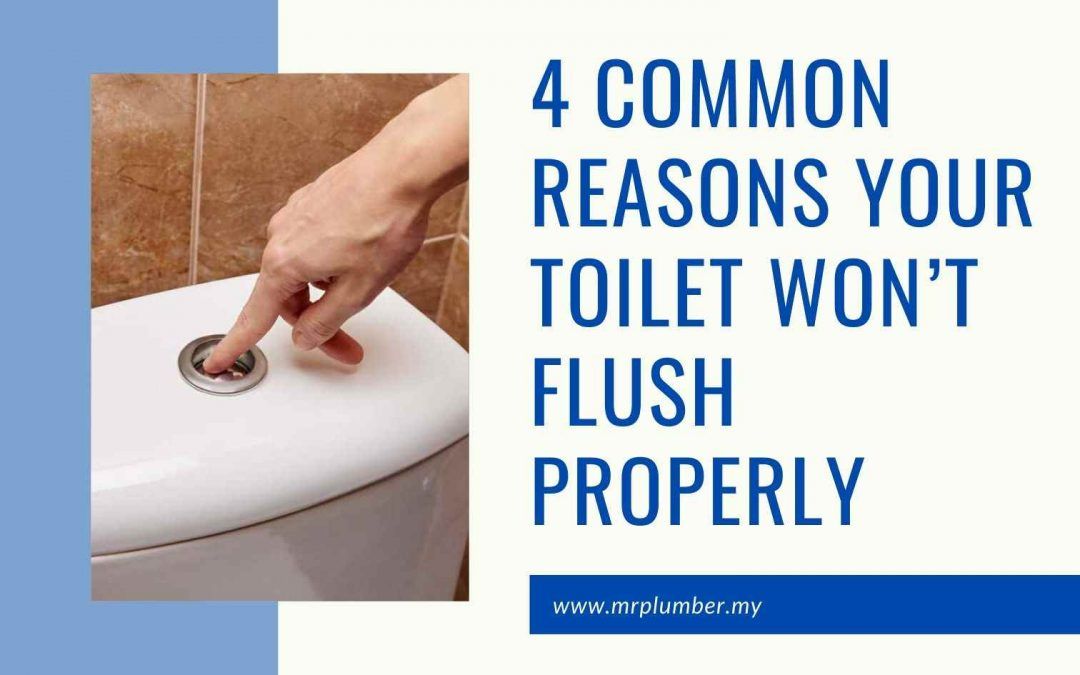 Reasons Your Toilet Won't Flush Properly