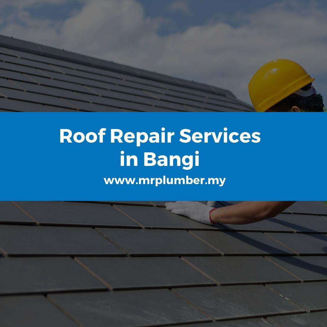 Roof Repair Bangi