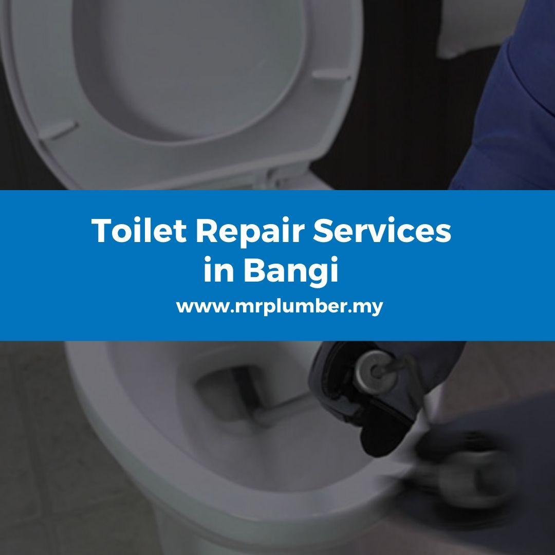 Toilet Repair Services Bangi