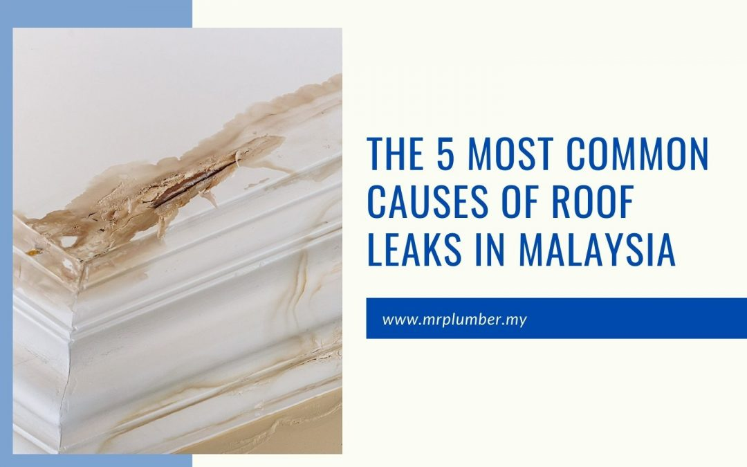 The 5 Most Common Causes of Roof Leaks in Malaysia