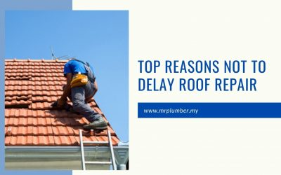 Top Reasons Not to Delay Roof Repair