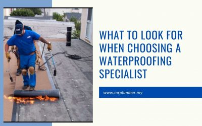 What to Look for When Choosing a Waterpoofing Specialist