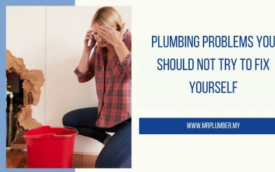 Plumbing Problems You Should Not Try To Fix Yourself