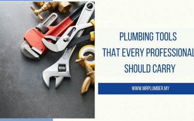 Plumbing Tools That Every Professional Should Carry